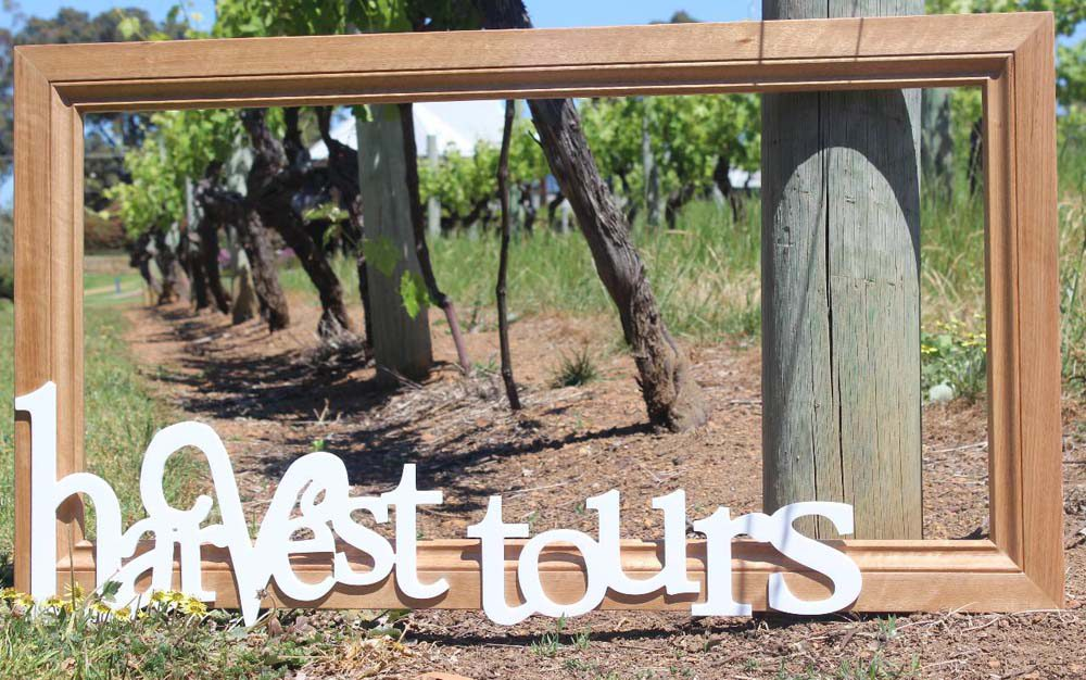 Wine & Food Lovers Tour